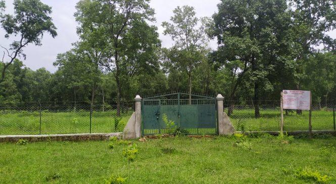 बैजनाथमा आधुनिक चिल्ड्रेन पार्क बन्दै