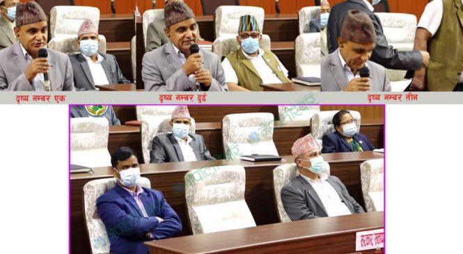 एमालेले निलम्बन गरेका सांसद बैठकमा सहभागी, फेरि संसद अवरुद्ध